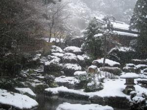 snow_garden.jpg