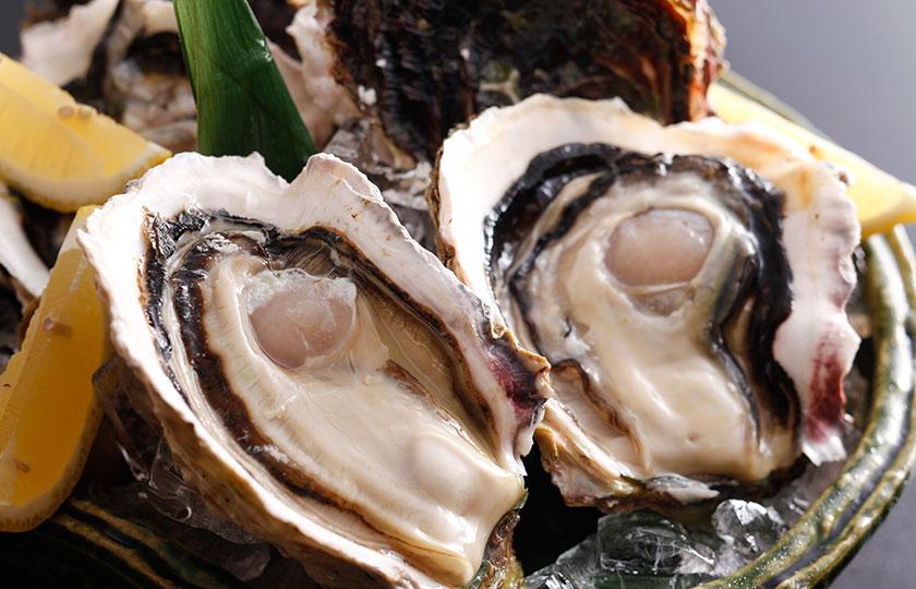 山陰岩牡蠣